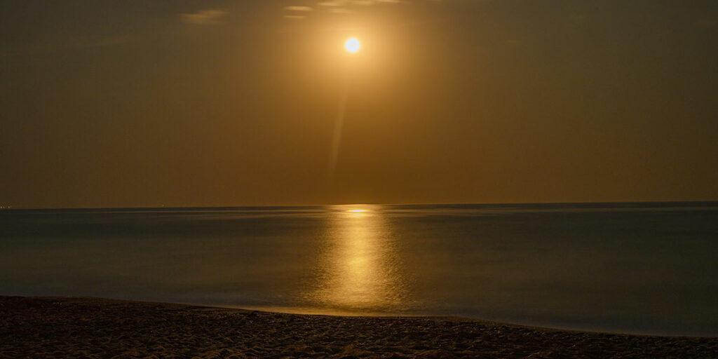 Οι Δεσμοί της Σελήνης